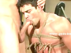 athletic gay boy at the gym tied by sado maso