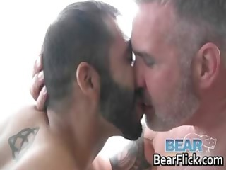 gay bear like with brace wilhold part2