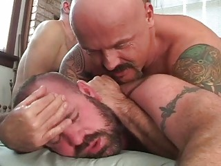 Bears daddy fuck the world gay porno men 10