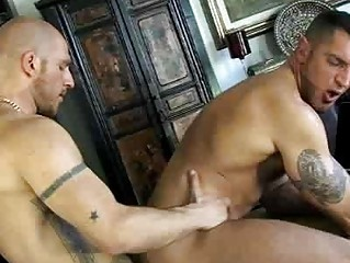 french gay guy had his cock blown by bald stud
