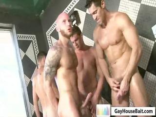 gayhousebait bathroom fornications