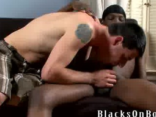 gay twink mixed bunch  fellatio
