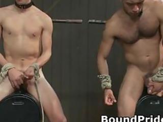 hogtied gay slaves taking jerked off part5