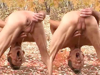 mad penis and arse outdoors - more compared to